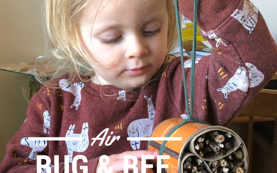 Air Bug & Bee – Indoor Nature Connection Day 7