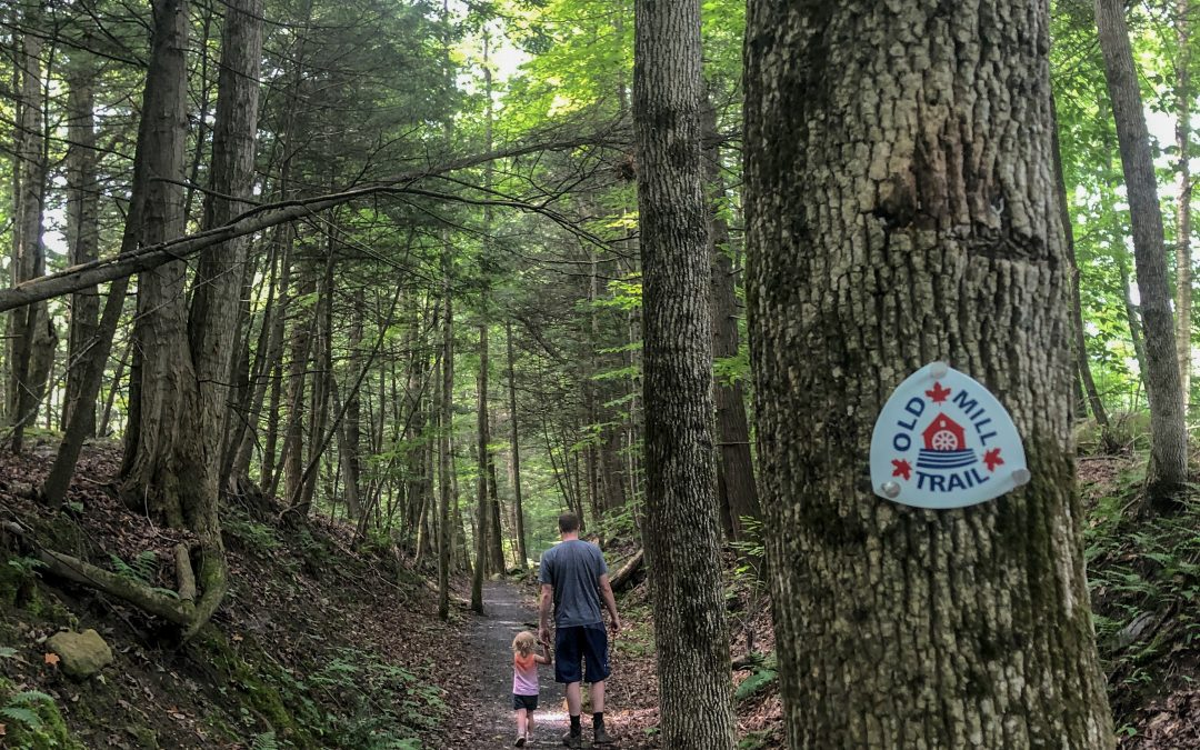 This One's For Beginners – Old Mill Trail