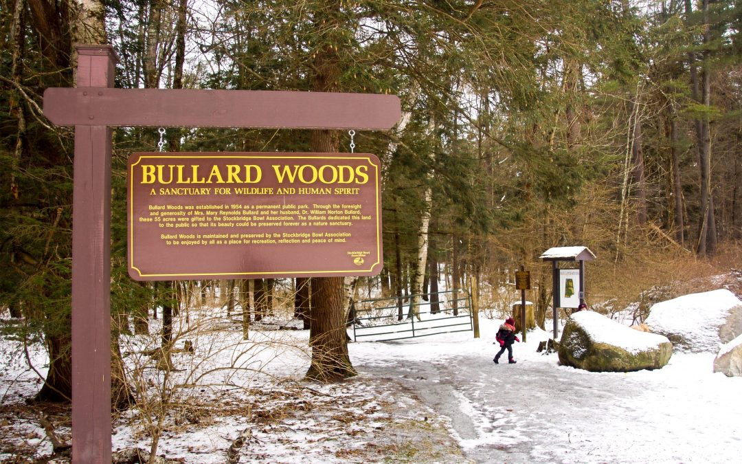 Amidst Ancient Air – Bullard Woods