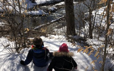 Cold Weather Walk – Canoe Meadows Wildlife Sanctuary