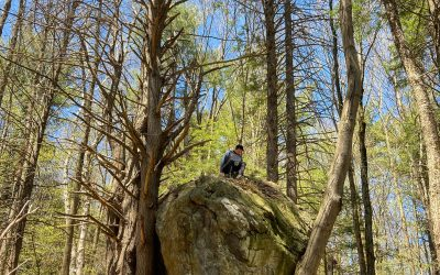 Picnics, Paths, & Pebbles – Bullitt Reservation