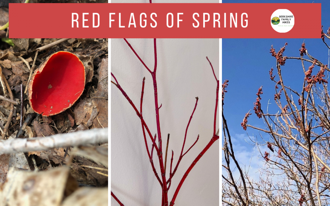 Red Flags of Spring — Free Printable!