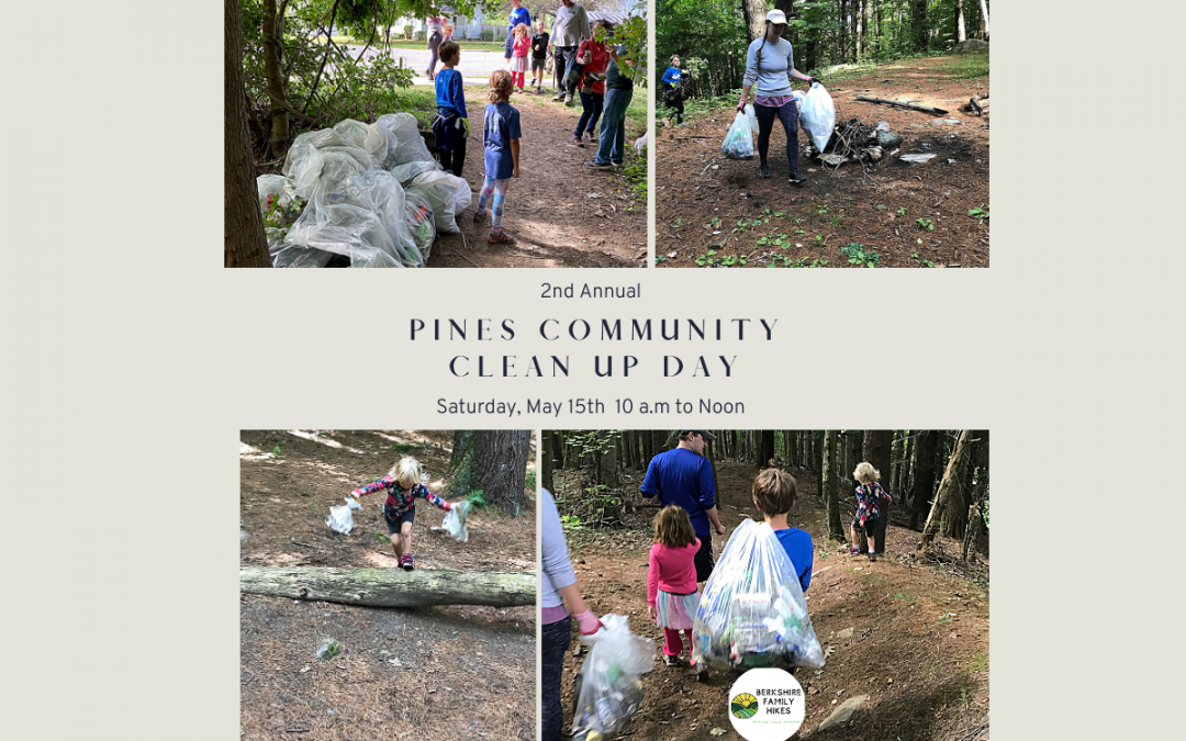 2nd Annual Pines Community Clean Up Day