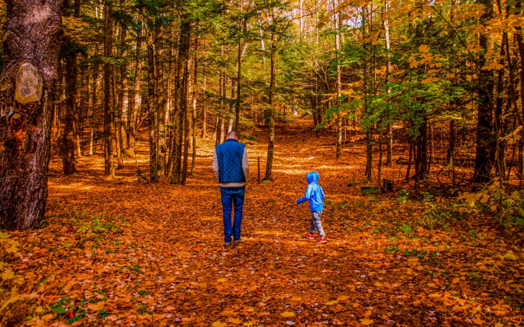 20 Family-Friendly Fall Foliage Hikes in the Berkshires